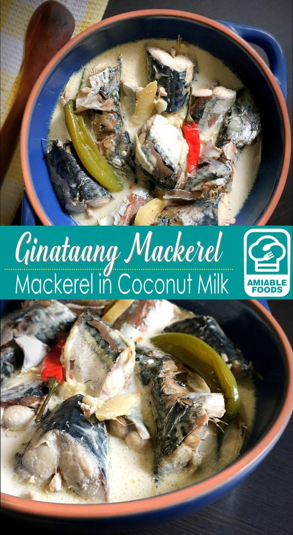 ginataang mackerel pinterest