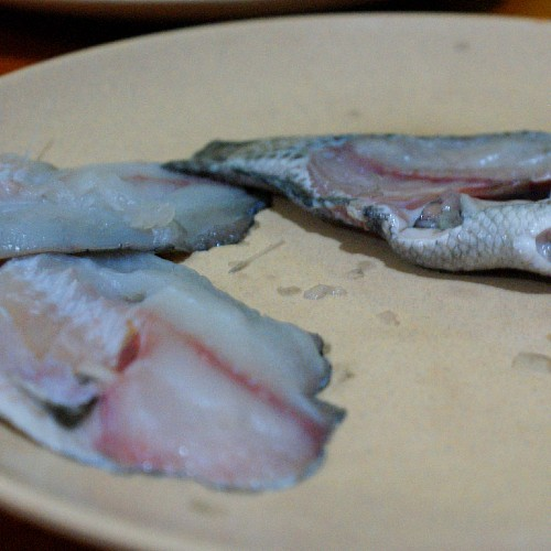 filleted tilapia
